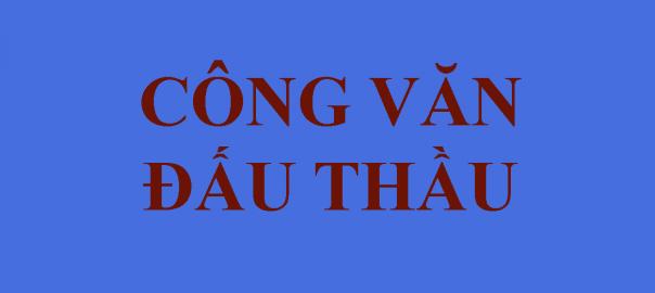 CONG VAN DAU THAU DEMO